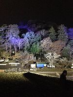 File:Illuminated Mount Arashiyama 5.jpg