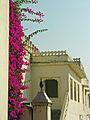 India-7110 - Flickr - archer10 (Dennis).jpg