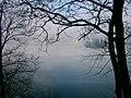 Insel Wörth - panoramio.jpg