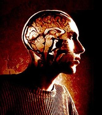 Negative affectivity - Mind and Emotion