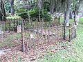 Iron fence, cemetery.jpg