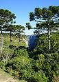 Itaimbezinho - Parque Nacional Aparados da Serra 38.JPG