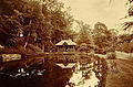 Jack Crofts Pond Lowther Castle circa 1900.jpg