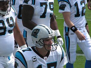 Jake Delhomme, quarterback of the Carolina Pan...