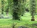 Jena Johannisfriedhof 01.jpg