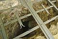 Jeskyně Hladomorna - obnovený středověký vstup, Holštejn, okres Blansko.jpg