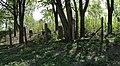 Jewish cemetery Zelechow IMGP3261.jpg