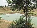 Jhanpara, West Bengal, India - panoramio (1).jpg