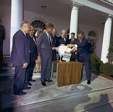 John F. Kennedy spares a turkey. The practice of pardoning turkeys in this manner became a permanent tradition in 1989. John F. Kennedy, turkey pardon.jpg