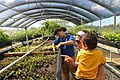 José at the USFWS Greenhouse in Boquerón (6499802917).jpg