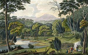 Bushranger - Convict artist Joseph Lycett's View Upon the Napean (1825) shows a gang of bushrangers with guns.