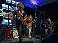Jouhikko Death Hawksien esityksessä Flow Festivaaleilla 10.08.2014.jpg