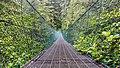Juan de Fuca Trail, Vancouver Island, Canada 09.jpg