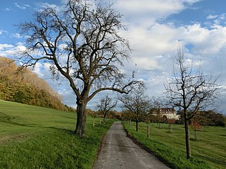 Überlingen - Jubilation Path, through the Spetzcastle grounds