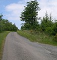 Junction of Forest track with Banc Farm road. - geograph.org.uk - 1337595.jpg