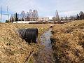 Jyväskylä - ditch.jpg