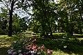 Kámoni Arborétum Szombathely Kamon Arboretum Park 12.jpg