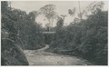 KITLV - 12614 - Kleingrothe, C.J. - Medan - Bridge over the Sungai Belumai at Sedari in Deli, Sumatra - 1903.tif