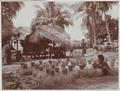 KITLV - 7364 - Kurkdjian, Ohannes - Soerabaja - Harvesting rice in Bali - circa 1920.tif