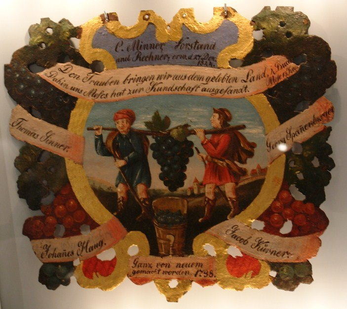 Kalebstraube im Tübinger Stadtmuseum