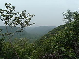 Bewaldete Berglandschaft (feuchter Monsunwald) in den mittleren Ostghats (Naturschutzgebiet Kambalakonda nahe Visakhapatnam, Andhra Pradesh)