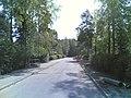Kekomäentie - panoramio (1).jpg