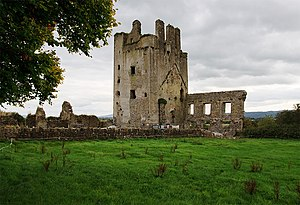 Kilcash Castle - Kilcash Castle ruin