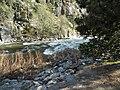 Kings Canyon P4280984.jpg