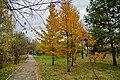 Kirovskiy rayon, Khabarovsk, Khabarovskiy kray, Russia - panoramio (121).jpg
