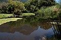Kistenbosch National Botanical Garden - panoramio (2).jpg