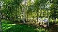 Koltsovo, Kaluzhskaya oblast', Russia, 249866 - panoramio (3).jpg