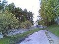 Kotikonnuntie - panoramio (1).jpg