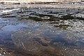 Kuji River 54.jpg