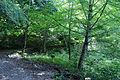 Kurayoshi Utsubuki park12s5s4592.jpg
