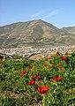 Kurdistan 20090511 05.jpg