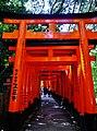 Kyoto Schrein Fushimi-Inari-taisha Torii 36.jpg