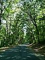 LHHV Field Trip to Gettysburg september 2016 - panoramio - Ron Shawley (39).jpg