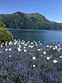 Lake Lugano31.jpg