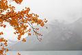 Lake Minnewanka (15538950116).jpg