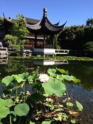 Lan Su Chinese Garden - Image: Lan su chinese garden lotus flower lec by andrew parodi