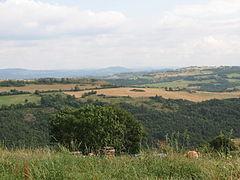 Landscape-IMG 6911.JPG