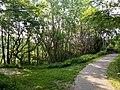 Landschaftsschutzgebiet Wäldchen bei Buer Melle Datei 20.jpg
