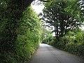 Lane approaching the A487 - geograph.org.uk - 1441035.jpg