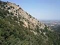 Laroque des Alberes - panoramio (11).jpg
