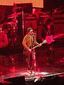 Lenny Kravitz Bercy 2014-2.JPG