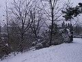 Letenské sady - panoramio (52).jpg