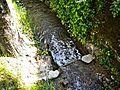 Localita' La Badia-torrente 1.jpg
