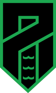 Pordenone Calcio Italian football club