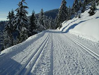 Cross-country skiing - Groomed ski trails for cross-country in Thuringia, track-set for classic skiing at the sides and groomed for skate skiing in the center.