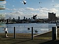 London-Docklands, Gallions Reach 25.jpg